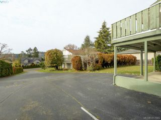 Photo 22: 4375 Torquay Dr in VICTORIA: SE Gordon Head House for sale (Saanich East)  : MLS®# 828634