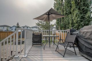 Photo 38: 128 Mt Aberdeen Circle SE in Calgary: McKenzie Lake Detached for sale : MLS®# A1131122