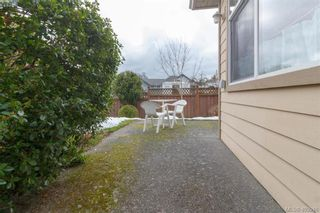 Photo 18: 14 3281 Maplewood Rd in VICTORIA: SE Cedar Hill Row/Townhouse for sale (Saanich East)  : MLS®# 806728