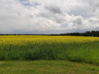 Photo 4: 3 Coal Mine Road: Rural Sturgeon County Land Commercial for sale : MLS®# E4207456