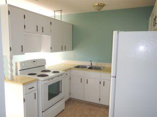 Photo 3: 13225 38 Street NW in Edmonton: Zone 35 House Half Duplex for sale : MLS®# E4239241