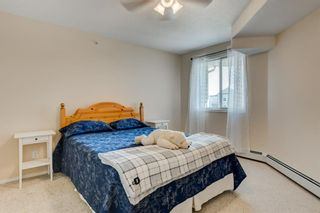 Photo 18: 408 3000 Somervale Court SW in Calgary: Somerset Apartment for sale : MLS®# A1146188
