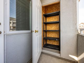 Photo 18: 407 2422 Erlton Street SW in Calgary: Erlton Apartment for sale : MLS®# A1092485