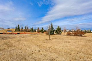 Photo 26: 7422 7327 SOUTH TERWILLEGAR Drive in Edmonton: Zone 14 Condo for sale : MLS®# E4236530