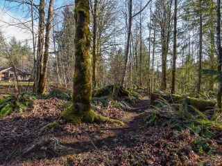 Photo 38: 3699 Burns Rd in COURTENAY: CV Courtenay West House for sale (Comox Valley)  : MLS®# 834832