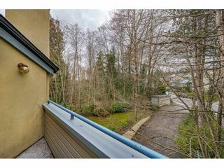 "Photo 31: 14 2978 WALTON Avenue in Coquitlam: Canyon Springs Townhouse for sale in ""Creek Terraces"" : MLS®# R2548187"