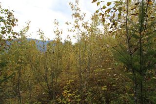 Photo 7: Lot 81 Sunset Drive: Eagle Bay Land Only for sale (Shuswap)  : MLS®# 10186644