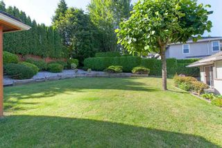 Photo 4: 4646 215B STREET in Langley: Murrayville Home for sale ()  : MLS®# R2086032