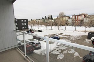Photo 19: 303 4455A Greenview Drive NE in Calgary: Greenview Apartment for sale : MLS®# A1049950