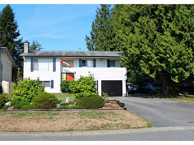 Main Photo: 11731 194A Street in Pitt Meadows: South Meadows House for sale : MLS®# V1138915
