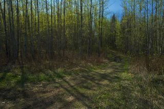 Photo 36: RR 21 TWP 565A Lake Nakamun: Rural Lac Ste. Anne County Rural Land/Vacant Lot for sale : MLS®# E4246330