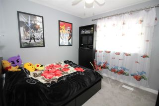 Photo 12: 3579 ST. THOMAS Street in Port Coquitlam: Lincoln Park PQ House for sale : MLS®# R2381919