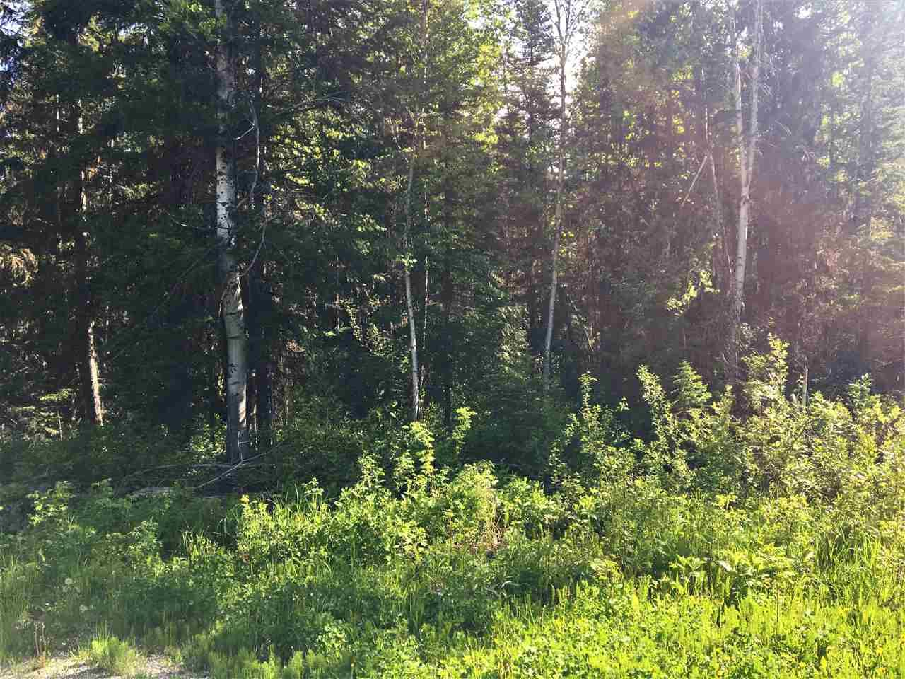 Photo 6: Photos: SHAVER ROAD in Quesnel: Quesnel - Rural North Land for sale (Quesnel (Zone 28))  : MLS®# R2461973