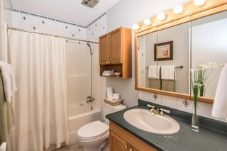 Photo 29: 3005 DOVERBROOK Road SE in Calgary: Dover Detached for sale : MLS®# A1020927