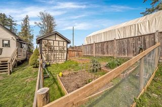 Photo 9: 20324 HAMPTON Street in Maple Ridge: Southwest Maple Ridge House for sale : MLS®# R2562554
