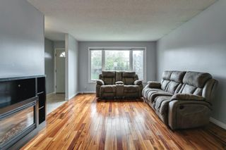 Photo 6: 4763 Rundlewood Drive NE in Calgary: Rundle Detached for sale : MLS®# A1107417