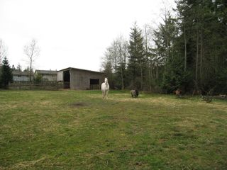 Photo 6: 1661 BAILLIE ROAD in COMOX: Residential Detached for sale : MLS®# 269400