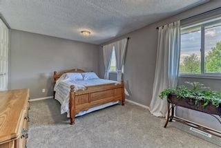 Photo 20: 3454 Twp Rd 290 A Township: Rural Mountain View County Detached for sale : MLS®# A1113773
