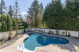 """Photo 31: 4516 199A Street in Langley: Langley City House for sale in """"Mason Heights"""" : MLS®# R2570140"""