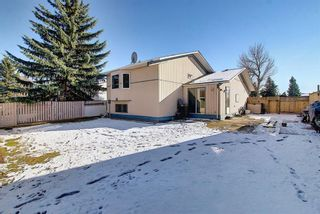 Photo 23: 348 TEMPLETON Circle NE in Calgary: Temple Detached for sale : MLS®# A1090566
