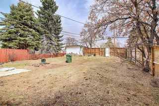Photo 24: 4328 70 Street NW in Calgary: Bowness Detached for sale : MLS®# A1093003