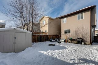 Photo 33: 400 Prestwick Circle SE in Calgary: McKenzie Towne Detached for sale : MLS®# A1070379