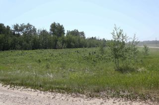 Photo 11: TWP 494 RR 42: Rural Leduc County Rural Land/Vacant Lot for sale : MLS®# E4252228