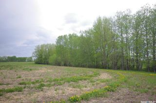 Photo 7: Weiss Lakefront Acreage in Big River: Lot/Land for sale : MLS®# SK834150