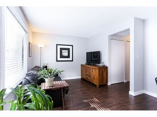 Photo 7: 898 CUNNINGHAM LN in Port Moody: North Shore Pt Moody Condo for sale : MLS®# V1116734