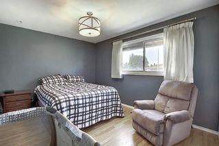 Photo 15: 7223 91 Avenue in Edmonton: Zone 18 House for sale : MLS®# E4247250