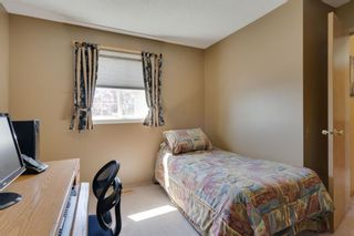 Photo 31: 256 COVENTRY Green NE in Calgary: Coventry Hills Detached for sale : MLS®# A1024304