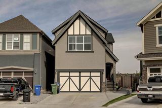 Photo 3: 123 Masters Heights SE in Calgary: Mahogany Detached for sale : MLS®# A1050411