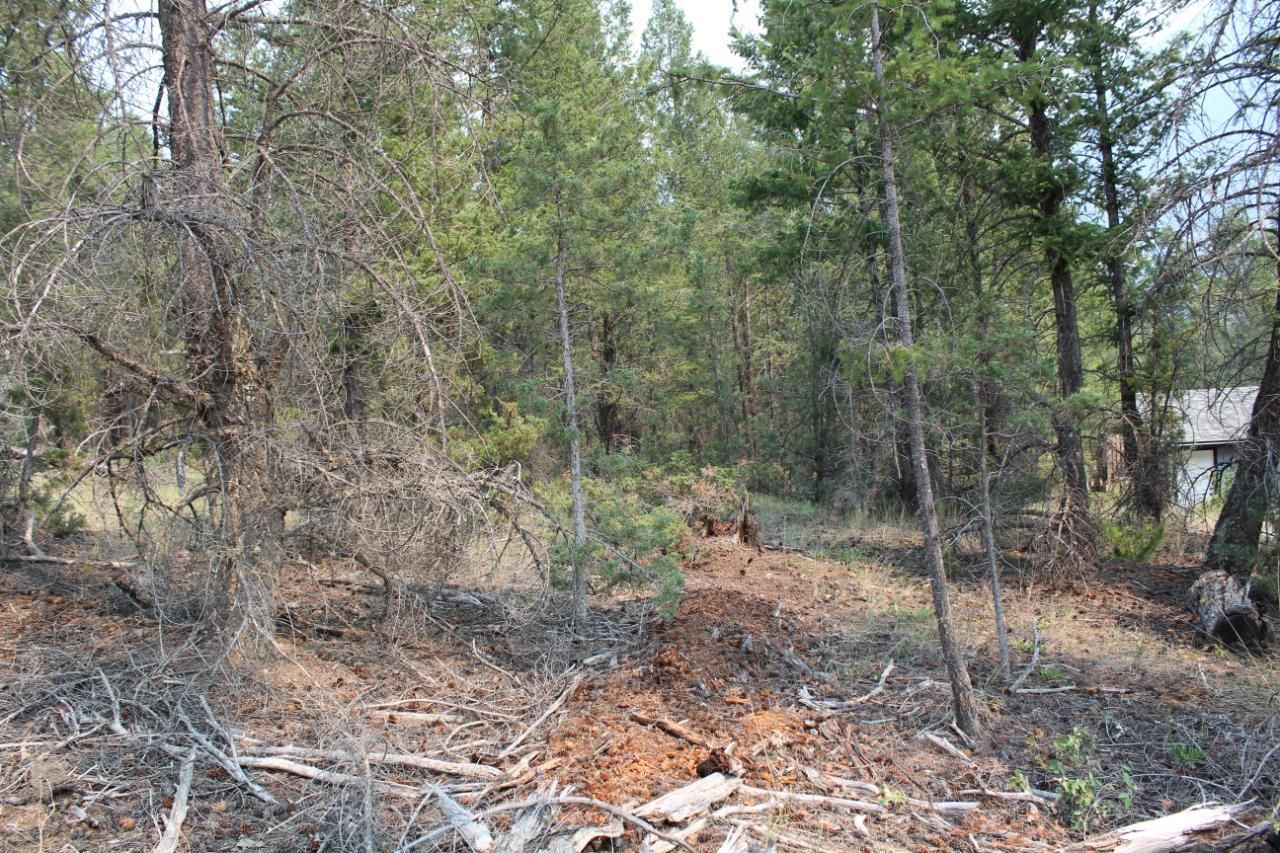Main Photo: Lot 15 COPPER POINT WAY in Windermere: Vacant Land for sale : MLS®# 2460140
