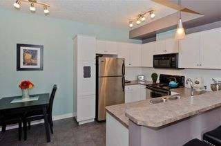 Photo 9: 209 208 HOLY CROSS Lane SW in Calgary: Mission Condo for sale : MLS®# C4113937