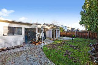 Photo 21: 20132 BRUCE Avenue in Maple Ridge: Southwest Maple Ridge House for sale : MLS®# R2528801