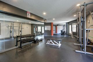Photo 27: 313 1408 17 Street SE in Calgary: Inglewood Apartment for sale : MLS®# A1114293