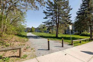"Photo 27: 203 6500 194 Street in Surrey: Clayton Condo for sale in ""SUNSET GROVE"" (Cloverdale)  : MLS®# R2569680"