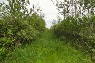 Photo 7: L11 Concession 3 Road in Brock: Beaverton Property for sale : MLS®# N2579342