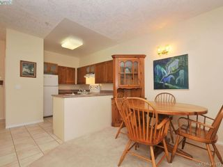 Photo 4: 114 1485 Garnet Rd in VICTORIA: SE Cedar Hill Condo for sale (Saanich East)  : MLS®# 680957
