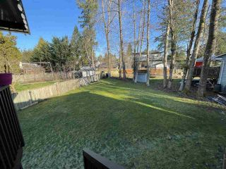 Photo 21: 9088 146A Street in Surrey: Bear Creek Green Timbers House for sale : MLS®# R2530663