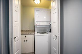 Photo 35: 11235 52 Street in Edmonton: Zone 09 House for sale : MLS®# E4252061
