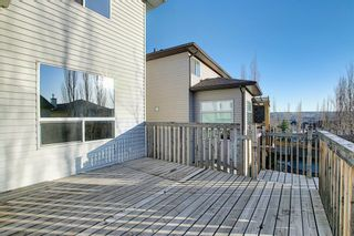 Photo 47: 45 Pantego Link NW in Calgary: Panorama Hills Detached for sale : MLS®# A1095229