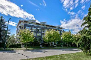 "Photo 19: 105 4867 CAMBIE Street in Vancouver: Cambie Condo for sale in ""ELIZABETH"" (Vancouver West)  : MLS®# R2587271"
