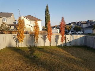Photo 37: 24 Country Hills Gate NW in Calgary: Country Hills Detached for sale : MLS®# A1152056