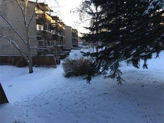 Photo 10: 613 8948 ELBOW Drive SW in Calgary: Haysboro Condo for sale : MLS®# C4046436