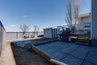 Photo 31: 227 Silver Springs Way NW: Airdrie Detached for sale : MLS®# A1083997
