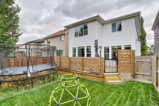 Photo 37: 1484 Copperfield Boulevard SE in Calgary: Copperfield Detached for sale : MLS®# A1137826