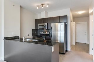 Photo 7: 303 325 3 Street SE in Calgary: Downtown East Village Apartment for sale : MLS®# C4222606
