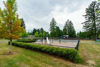 """Photo 22: 210 12096 222 Street in Maple Ridge: West Central Condo for sale in """"CANUCK PLAZA"""" : MLS®# R2608661"""