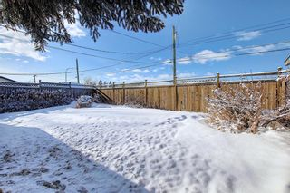 Photo 29: 67 Penmeadows Place SE in Calgary: Penbrooke Meadows Detached for sale : MLS®# A1066670